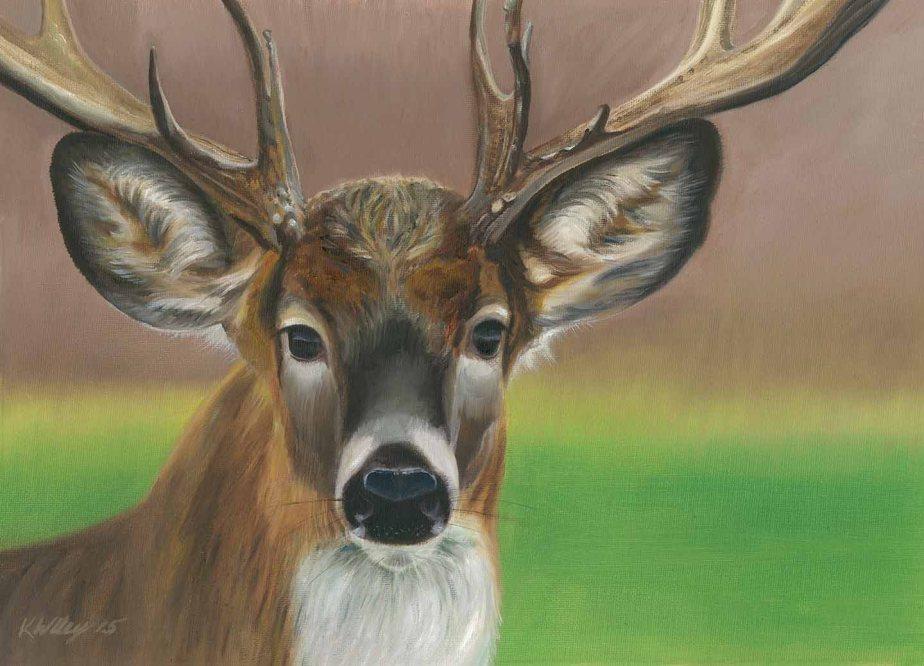Deer One Finished