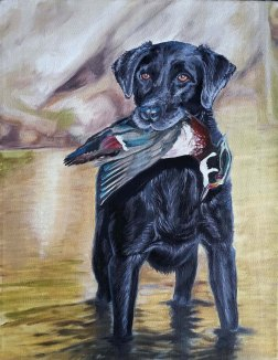 Black Lab in River - $45