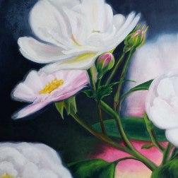Wild Roses - $50