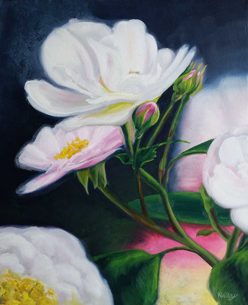 wild rose 5