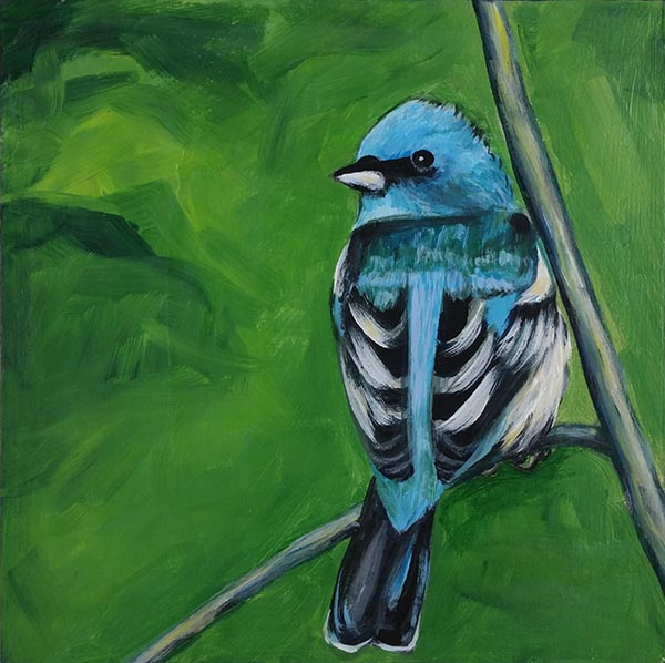 blue and green bird 6x6 acrylic on cradled wood panel